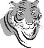 Pintura china de la tinta del tigre Fotografía de archivo