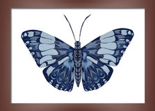 Pintura com borboletas Imagem de Stock