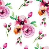 Pintura da aquarela com flores de Rosa seamless Imagem de Stock