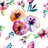 Pintura da aquarela com flores de Rosa seamless Foto de Stock Royalty Free