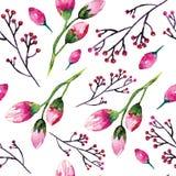 Pintura da aquarela com flores de Rosa seamless Imagem de Stock Royalty Free