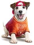 Pintura da aquarela do cachorrinho Fotografia de Stock Royalty Free