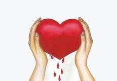 Pintura da aquarela do coração de Blooded Imagens de Stock