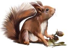 Pintura da aquarela do esquilo Imagem de Stock