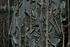 Pintura da casca Imagem de Stock