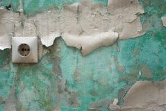 Pintura da casca Imagens de Stock Royalty Free