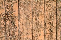 Pintura da casca Fotografia de Stock