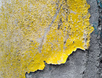Pintura da casca Imagens de Stock