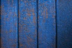Pintura da casca na parede de madeira Foto de Stock