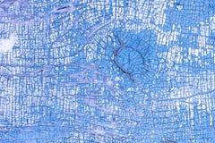 Pintura da casca na porta velha Um teste padrão do material azul rústico do grunge abstraia o fundo Fotografia de Stock Royalty Free