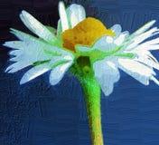 Pintura da flor fotografia de stock royalty free
