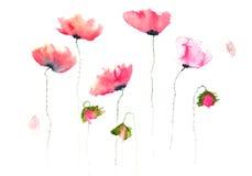 Pintura da flor da aquarela Imagens de Stock