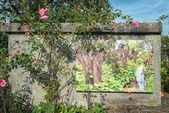 Pintura da lona com os salgueiros do descornado para a decoração de uma parede dentro Fotos de Stock Royalty Free