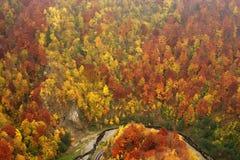 Pintura da natureza Foto de Stock Royalty Free