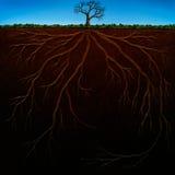 Pintura de Digitaces de la estructura de la raíz Fotografía de archivo