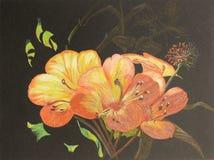 Pintura de flores en fondo oscuro Fotos de archivo libres de regalías