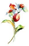 Pintura de la acuarela con las flores Fotografía de archivo