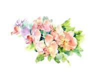 Pintura de la acuarela de hojas y de la flor Fotografía de archivo libre de regalías