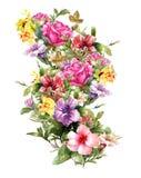 Pintura de la acuarela de hojas y de la flor Imagen de archivo