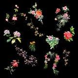 Pintura de la acuarela de hojas y de la flor Fotos de archivo