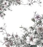 Pintura de la acuarela de hojas y de la flor, en el ejemplo blanco del fondo Imágenes de archivo libres de regalías