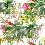 Pintura de la acuarela de hojas y del ejemplo de la flor Fotos de archivo libres de regalías