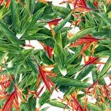 Pintura de la acuarela de la hoja y de las flores, modelo inconsútil Imagenes de archivo