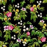 Pintura de la acuarela de la hoja y de las flores, modelo inconsútil Fotografía de archivo