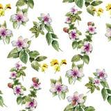 Pintura de la acuarela de la hoja y de las flores, modelo inconsútil en el fondo blanco Imagenes de archivo