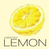 Pintura de la acuarela de la mitad de un limón Foto de archivo