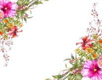 Pintura de la acuarela de hojas y de la flor, en el fondo blanco Imagen de archivo libre de regalías