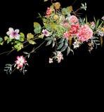 Pintura de la acuarela de hojas y de la flor, en fondo oscuro Fotos de archivo
