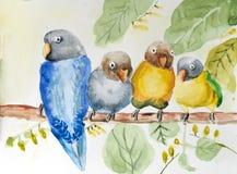 Pintura de la acuarela de pájaros en rama imagenes de archivo