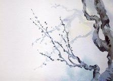 Pintura de la acuarela Ramas desnudas de un árbol viejo