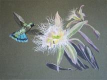 Pintura de la flor del colibrí y de la orquídea Fotografía de archivo