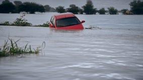 Pintura de la inundación después de un huracán almacen de video