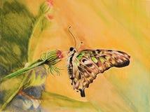 Pintura de la mariposa colorida Fotografía de archivo