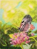 Pintura de la mariposa de la llave del piano Fotos de archivo