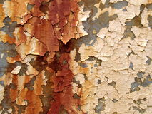 Pintura de la peladura Imagen de archivo libre de regalías