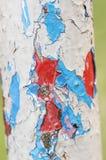 Pintura de la peladura Capas coloreadas Foto de archivo