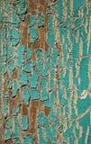 Pintura de la turquesa de la peladura Fotos de archivo libres de regalías