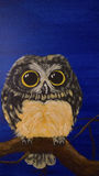 Pintura de uma coruja imagens de stock royalty free