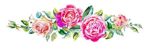 Pintura decorativa de la mano de la rosa aislada en blanco Imágenes de archivo libres de regalías