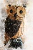 Pintura del búho, estilo de Digitaces de la acuarela Fotografía de archivo
