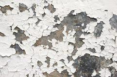 Pintura del blanco que forma escamas en la pared Foto de archivo libre de regalías