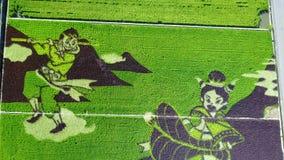 Pintura del campo de arroz almacen de video