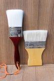 Pintura del cepillo Imagen de archivo