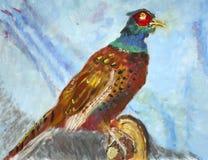 Pintura del faisán Imagen de archivo libre de regalías