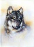 Pintura del lobo en la lona, fondo del color en el papel Fotos de archivo libres de regalías