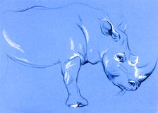 Pintura del rinoceronte libre illustration